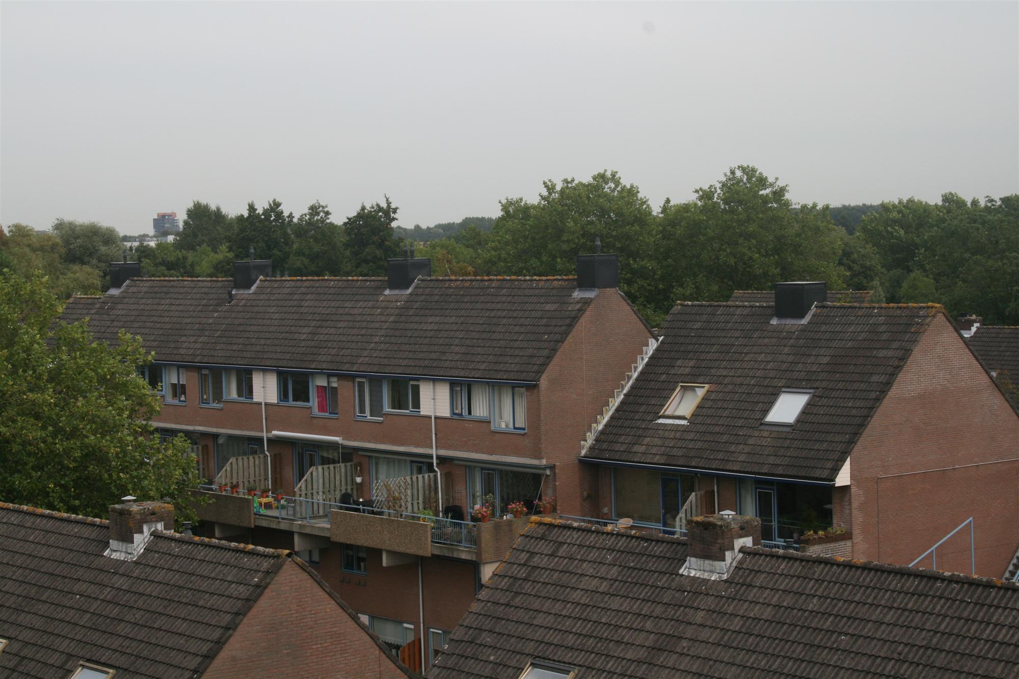 aanzicht-nieuwe-schoorstenen
